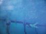 2006-10 Unterwasserbilder Training